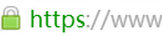 域名型DVSSL证书显示形式