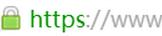 企业型OVSSL证书显示形式